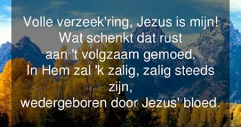 Volle Verzeek'ring